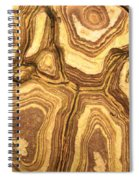 Nature's Interesting Patterns Spiral Notebook