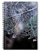 Nature's Lace Spiral Notebook