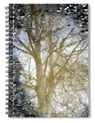 Natures Looking Glass 4 Spiral Notebook