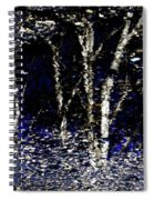 Natures Looking Glass 5 Spiral Notebook