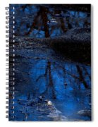 Natures Looking Glass Spiral Notebook