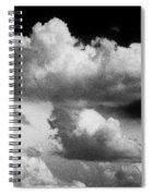 Nature's Mushroom Cloud Spiral Notebook