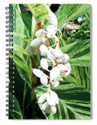 Nature's Next Creation Gp Spiral Notebook
