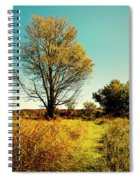 Nature's Pathway Spiral Notebook