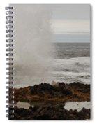 Nature's Power Spiral Notebook