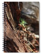 Natures Renewal  Spiral Notebook