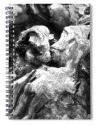 Natures Sculpture Spiral Notebook