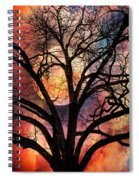 Nature's Stained Glass Spiral Notebook