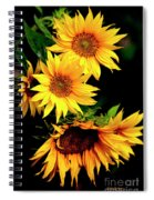 Natures Sunflower Bouquet Spiral Notebook