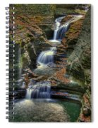 Nature's Tears Spiral Notebook