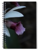 Natures Touch Spiral Notebook