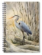 Nature's Wonder Spiral Notebook