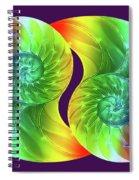 Nautilus Rainbow Spiral Notebook