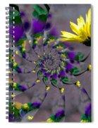 Nautilus Swirls Spiral Notebook