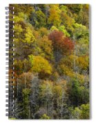 Nc Fall Foliage 0561 Spiral Notebook