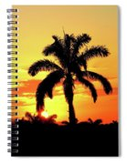 Near Perfect Palm Tree Spiral Notebook