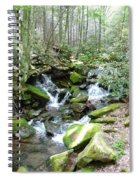 Near The Grotto Spiral Notebook