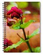 Nearly  Spiral Notebook