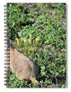 Nebraska Prairie Dog Spiral Notebook