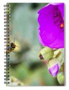 Nectar Run Spiral Notebook