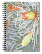 Needle Explosions Spiral Notebook