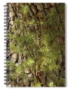 Needles And Bark Spiral Notebook