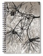 Needles Everywhere Spiral Notebook