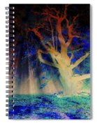 Negative Tree And Sunbeams Spiral Notebook