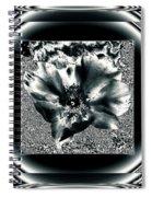 Negro Spiral Notebook