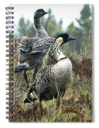 Nene Geese Spiral Notebook