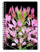 Neon Cleome Spiral Notebook