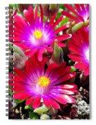 Neon Glow Spiral Notebook