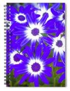 Neon Purple Cineraria Spiral Notebook