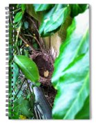 Nest In Plain Sight Spiral Notebook