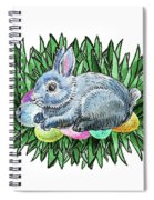 Nesting Easter Bunny Spiral Notebook