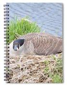 Nesting Goose Spiral Notebook