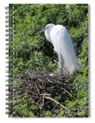 Nesting Great Egret With Egg Spiral Notebook