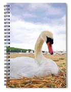 Nesting Mute Swan At Abbotsbury - Impressions Spiral Notebook
