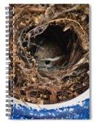 Nesting Wren Spiral Notebook