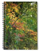 Nestled In The Woods Spiral Notebook