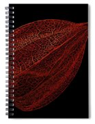 Net Spiral Notebook