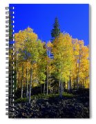 Nevada Fall Spiral Notebook