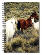 Nevada Wild Horses Spiral Notebook