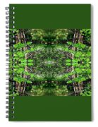 Never Ending Spiral Notebook