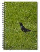 Nevermore  Spiral Notebook