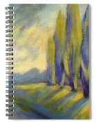 New Beginning 3 Spiral Notebook