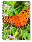 Windows From Heaven Orange Butterfly Spiral Notebook