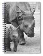 New Born Rhino And Mom Spiral Notebook