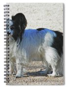 New Dog At The Park Spiral Notebook