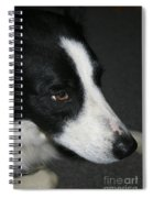 New Dog Friend Spiral Notebook